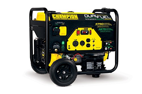 the Champion 3800-Watt generator