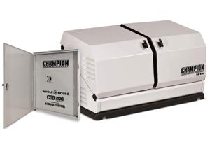 img_ChampionPowerEquipment100294